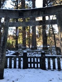日光最強霊地 滝尾神社 三本杉
