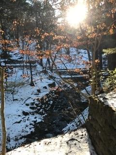 日光最強霊地 滝尾神社の春の訪れ