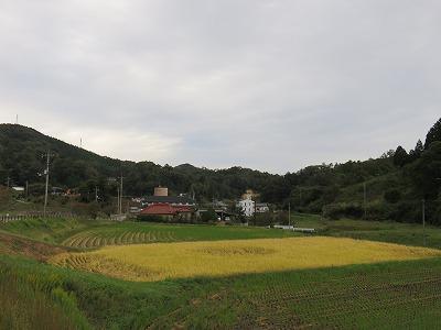 yano10.jpg