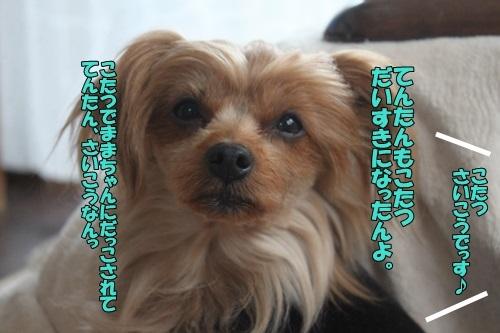 IMG_93081123.jpg