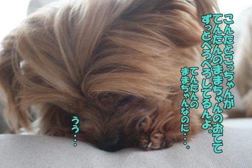 IMG_95420114.jpg