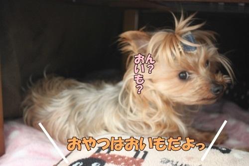 IMG_98420131.jpg