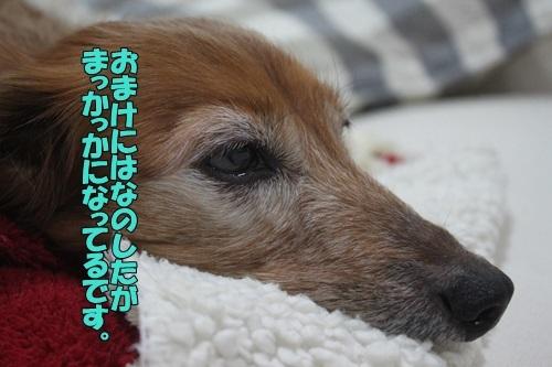 IMG_98720202.jpg