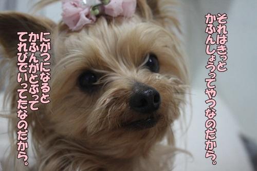 IMG_98730202.jpg