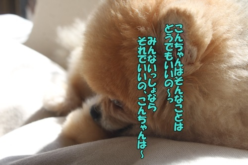 IMG_98780204.jpg