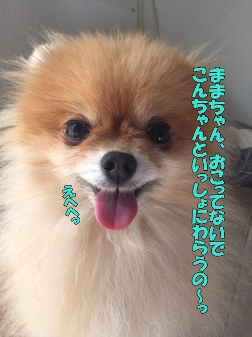 image10110.jpg