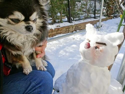 雪の日は楽し♪