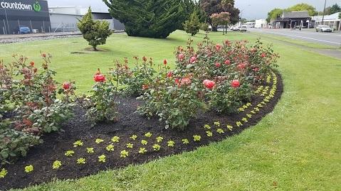 ニュージーランド、薔薇の町Feilding03