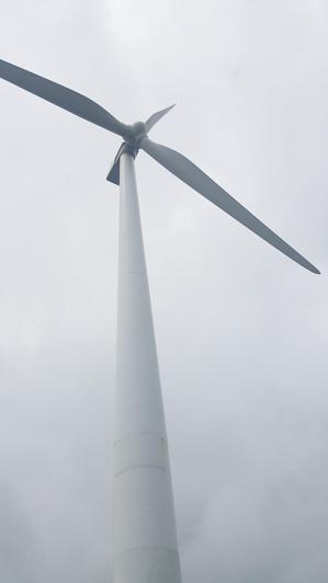 ニュージーランド_パーマストンノースの風力発電_05