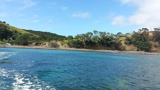 ニュージーランドのグラスボトムボート05