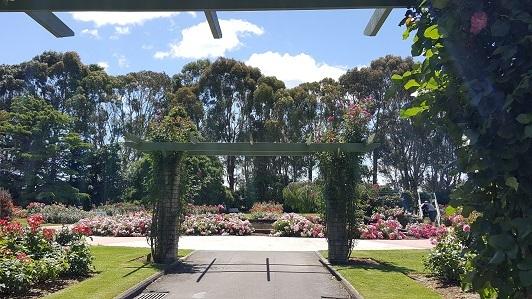 ニュージーランド_パーマストン・ノースのエスプラネード・ガーデンズ03