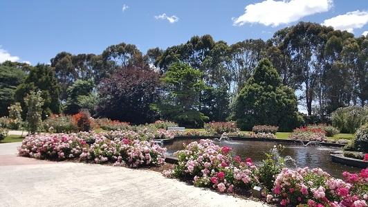 ニュージーランド_パーマストン・ノースのエスプラネード・ガーデンズ04