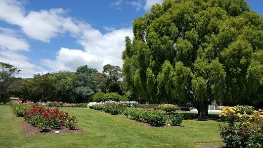 ニュージーランド_パーマストン・ノースのエスプラネード・ガーデンズ05