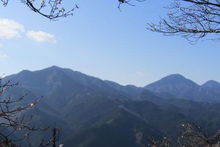 170103桜山 (2)s