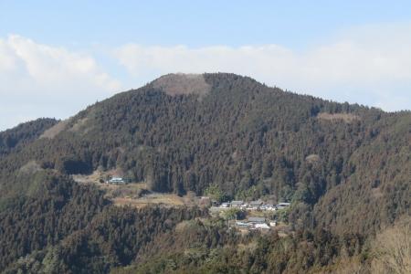 170103桜山 (11)s