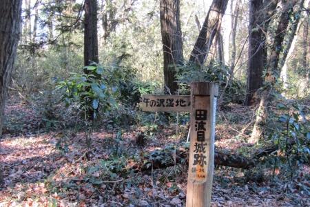 170121城山(坂戸市) (3)s