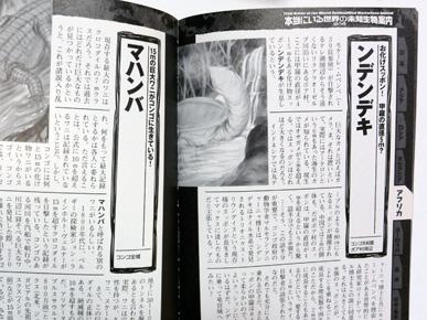 淡々と画像を貼るスレ UMA編・前編