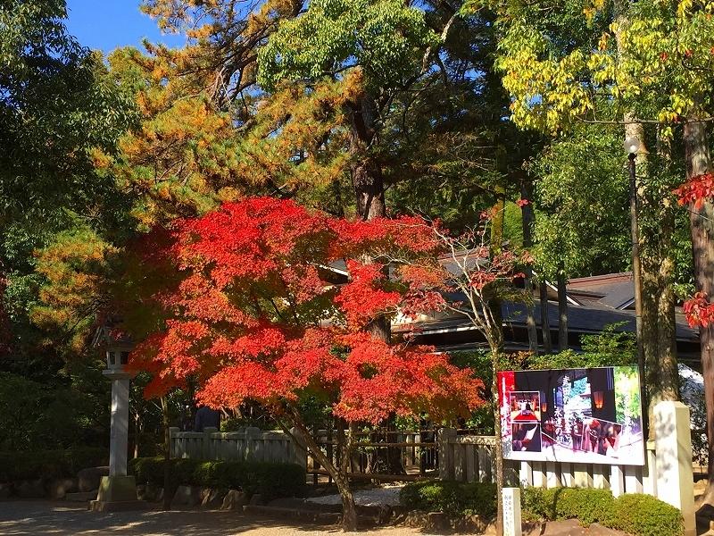 武田神社 (2)