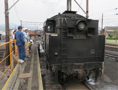 20160122_ooigawa32.jpg