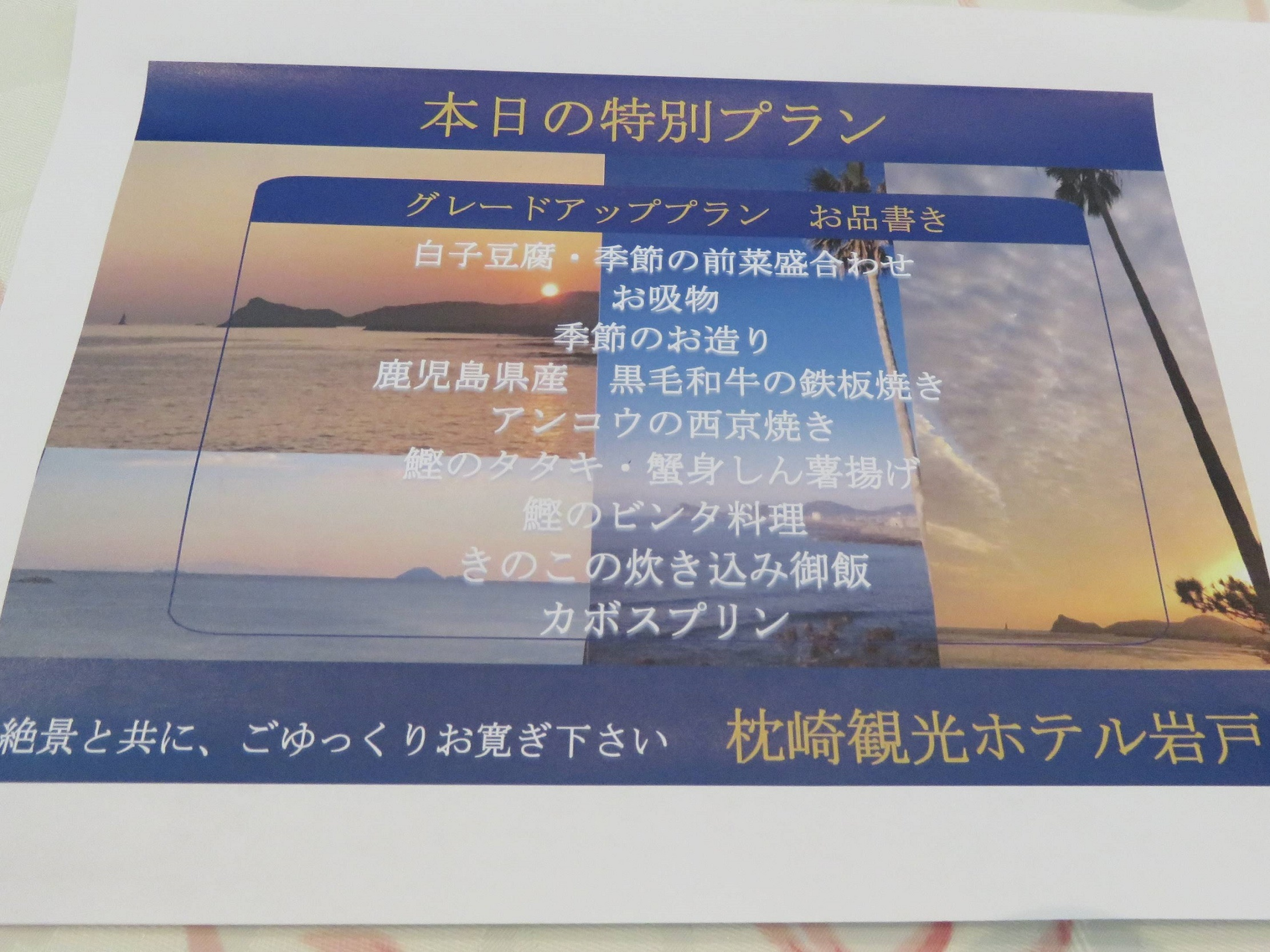 IMG_4230.jpg