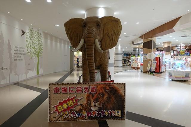 2 めっちゃさわれる動物園 (2)