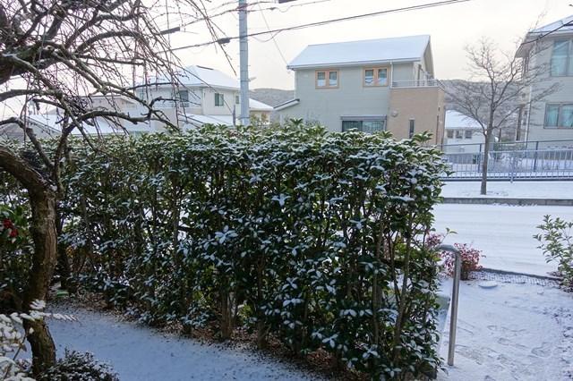7 雪景色 (2)