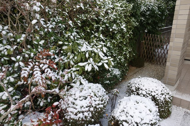 7 雪景色 (5)