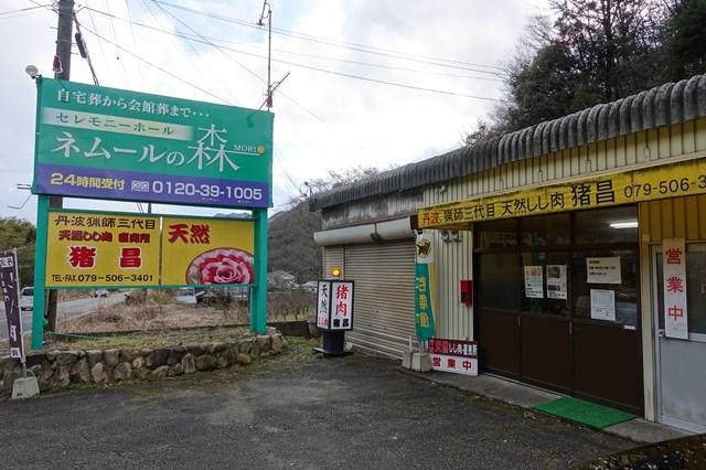 3 猪昌 (1)