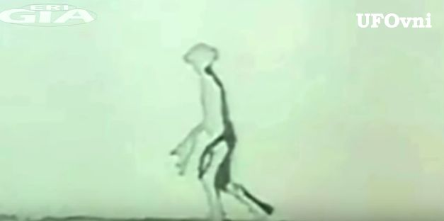 FBI「エイリアンはエーテル体で存在してる。幽霊みたいなもので今の地球人には知覚できない」