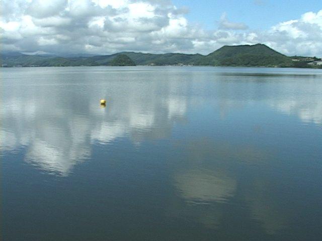 鳥取県にある湖山池で魚の鮗(コノシロ)が大量死…約1000匹を焼却処分、県「寒さが原因か」