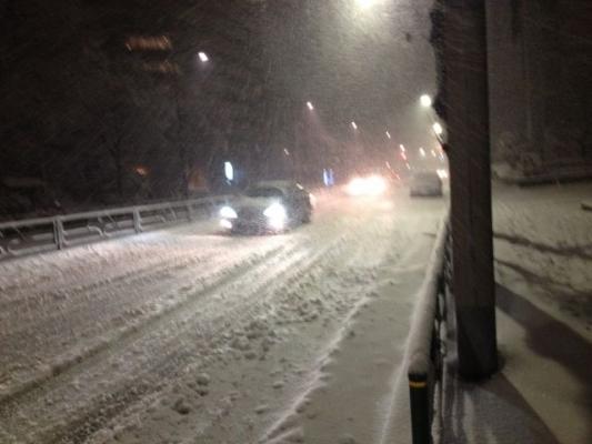 snow6387368.jpg