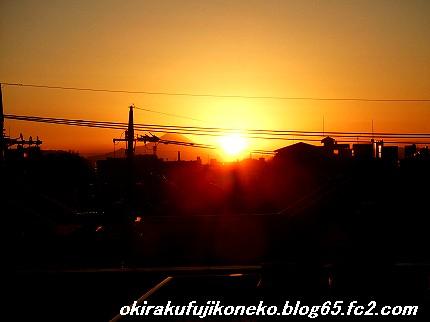 1231夕陽1
