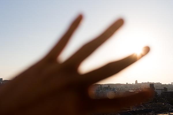 手のひらを太陽に