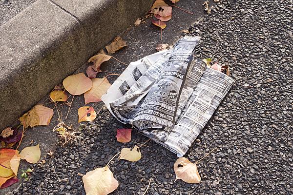 落ち葉と雑誌