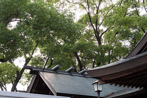 神明社本殿の屋根