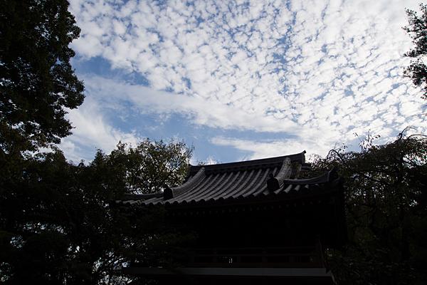 大永寺屋根