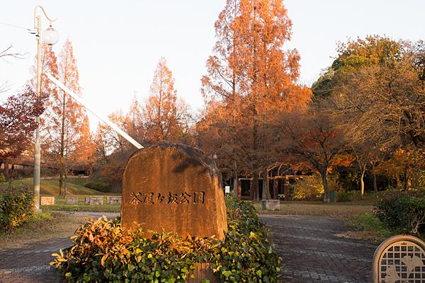 西日に染まる茶屋ヶ坂公園入り口