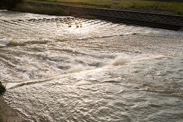 矢田川の流れ夕照