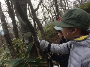 親子共育キャンプ登山 (8)