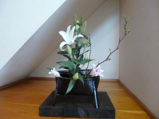 寺の花P1040101