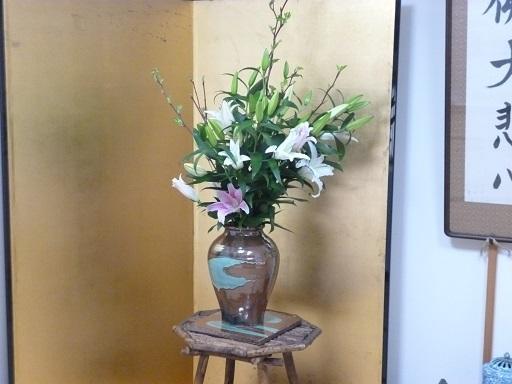 寺の花P1040102