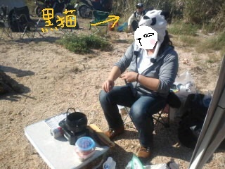 11_20161115134732d1c.jpg