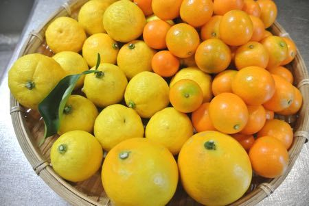 柚レモンきんかん