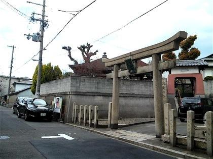 bentenzukakofunDCIM0113.jpg