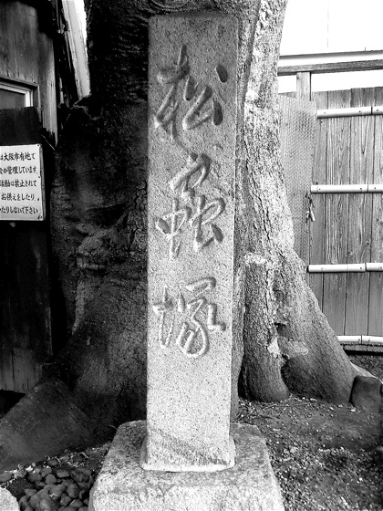 matsumushizukaNEC_0013.jpg