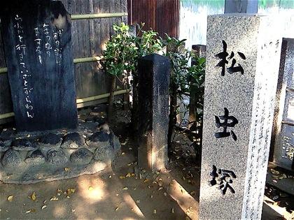 matsumushizukaNEC_0717.jpg