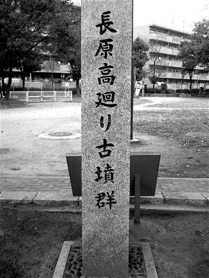 nagaharatakamawarikofungunNEC_0340.jpg