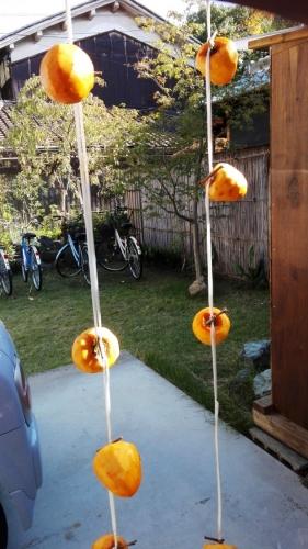 渋柿をつるす