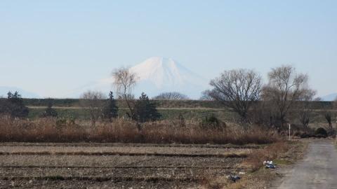 サイクリングロードから富士山がこんなに綺麗に