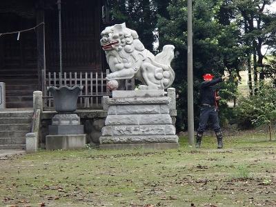 1中瀬神社(深谷市) (2)